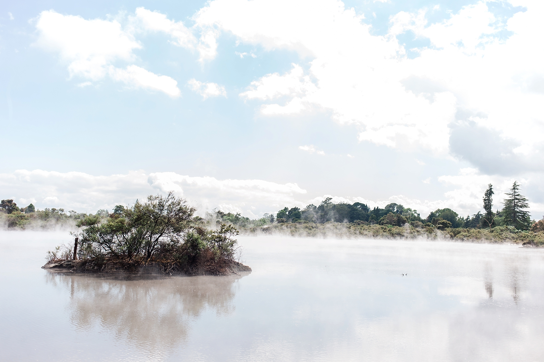 north-island-rotorua-new-zealand-scenery_0211.jpg