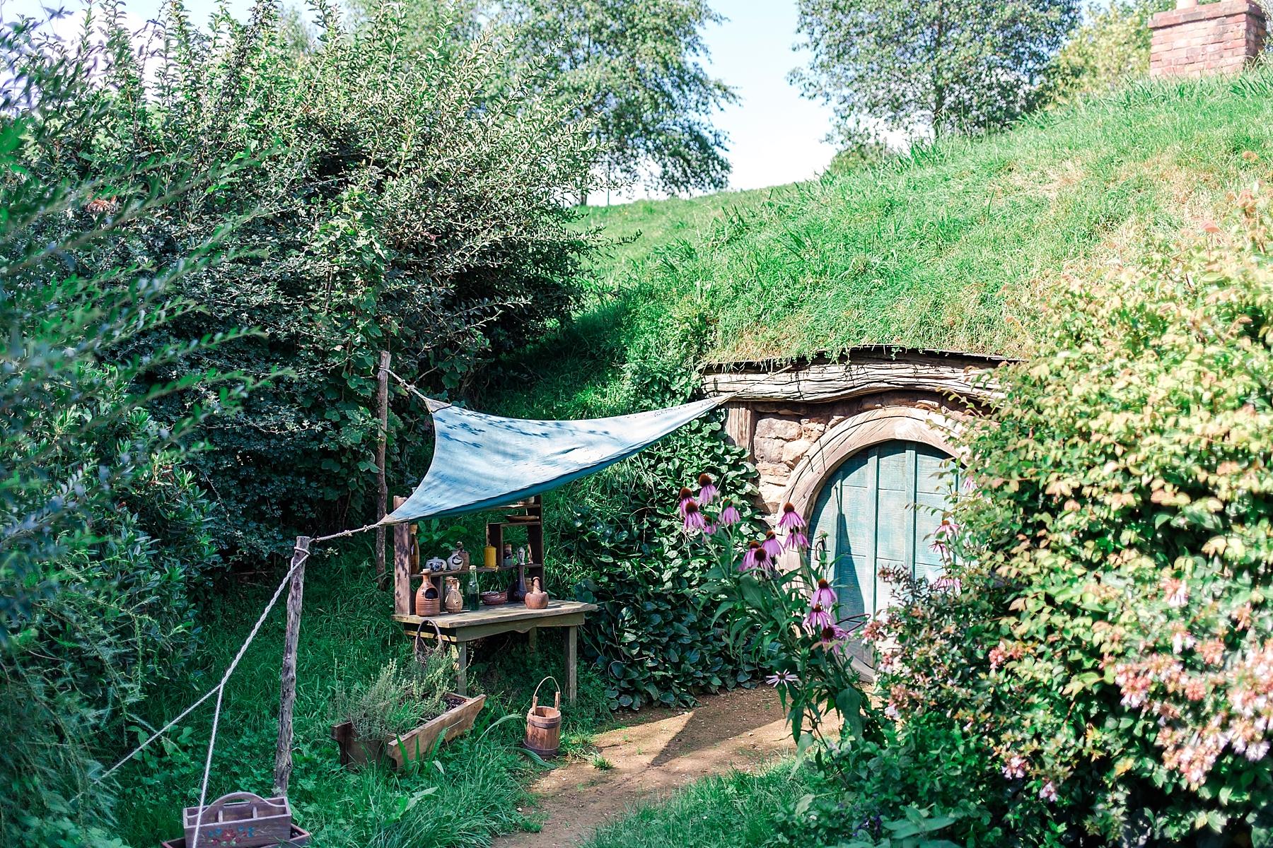 hobbiton-movie-set-matamata-hamilton-north-island-new-zealand-scenery_0239.jpg