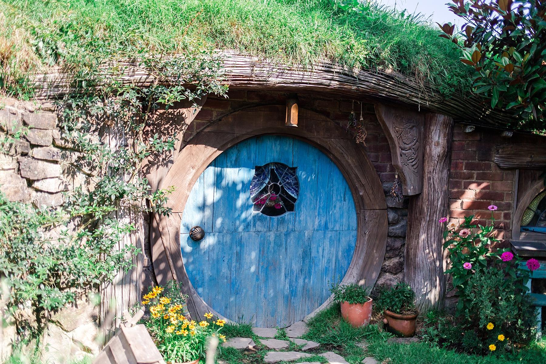 hobbiton-movie-set-matamata-hamilton-north-island-new-zealand-scenery_0240.jpg