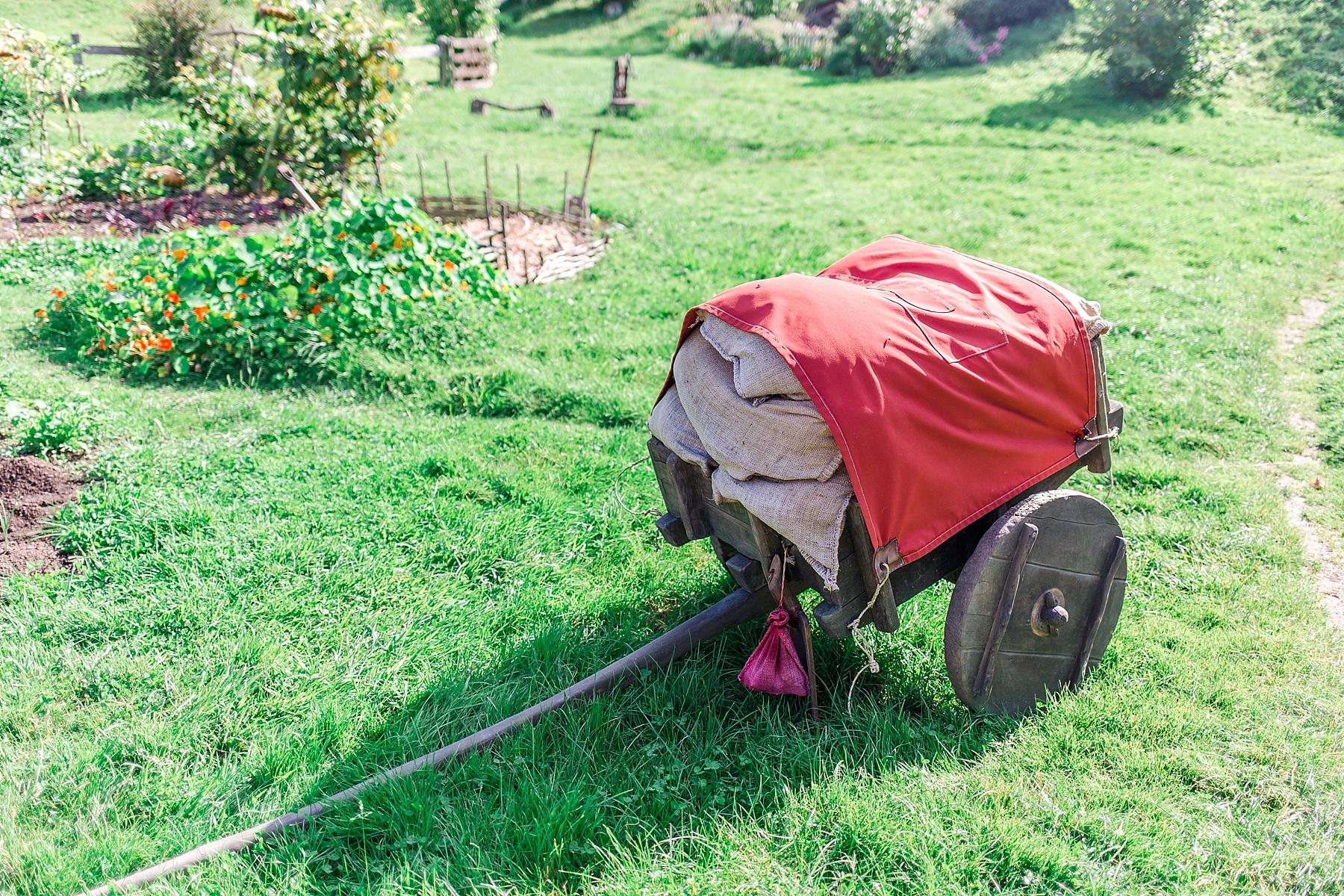 hobbiton-movie-set-matamata-hamilton-north-island-new-zealand-scenery_0243.jpg