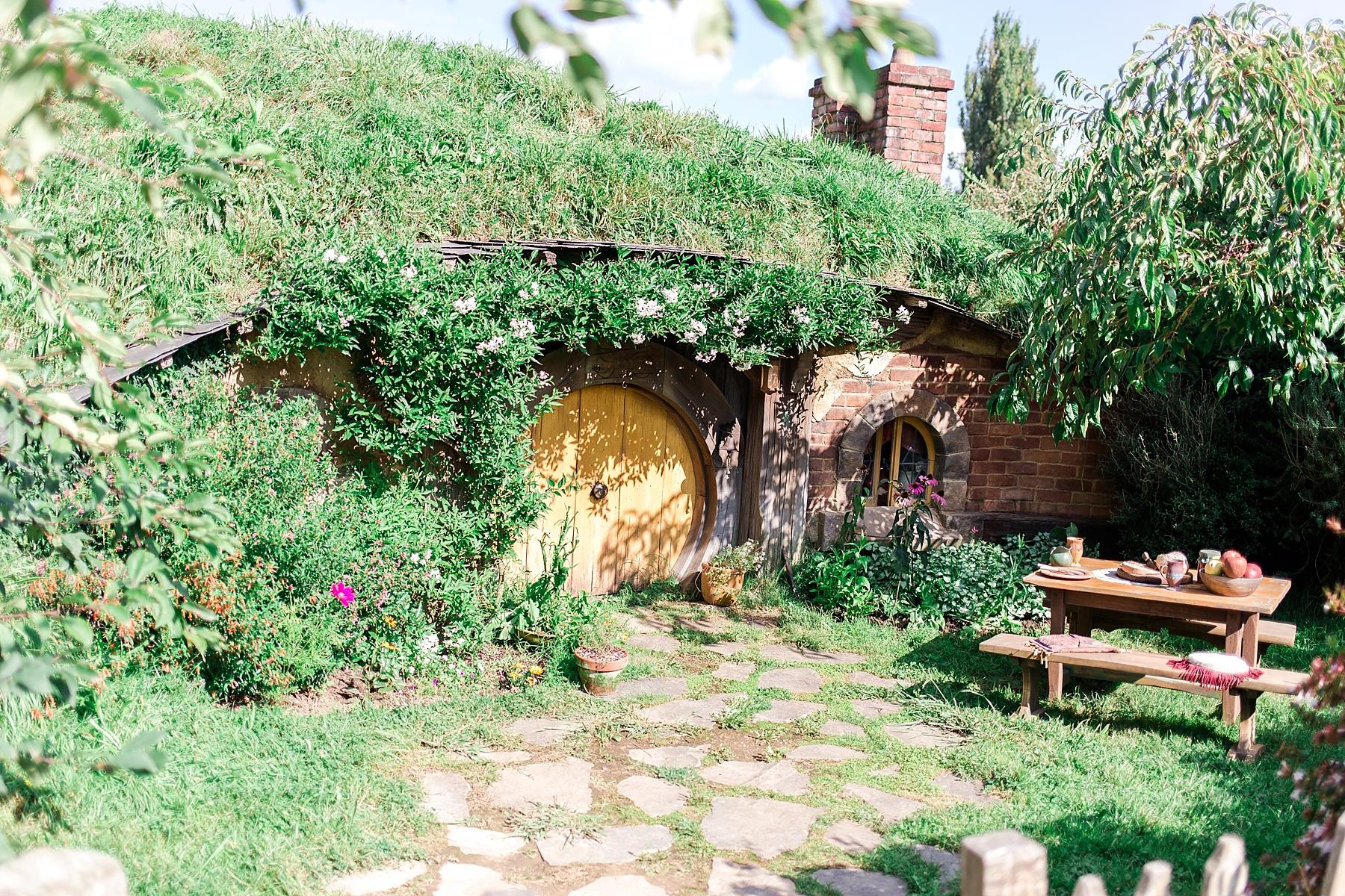 hobbiton-movie-set-matamata-hamilton-north-island-new-zealand-scenery_0245.jpg