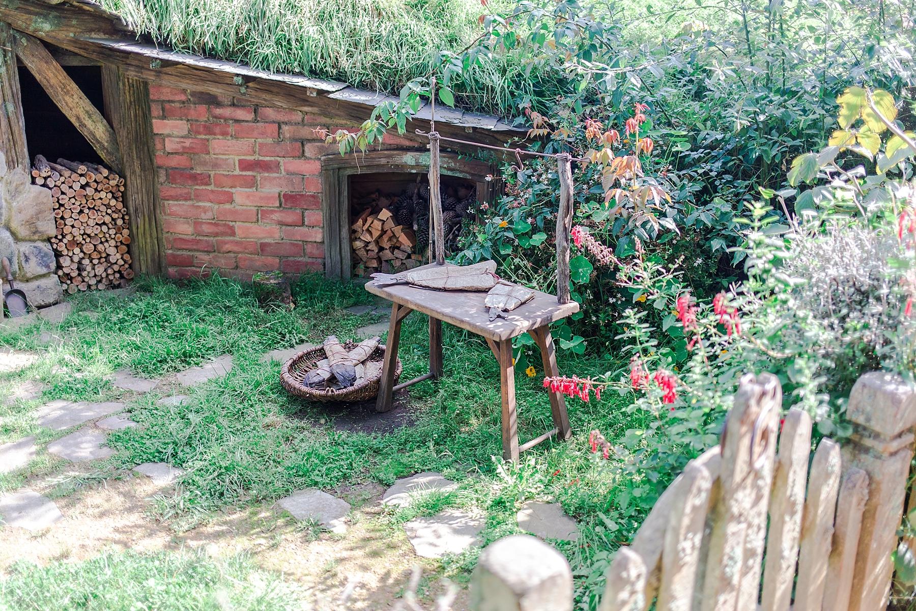 hobbiton-movie-set-matamata-hamilton-north-island-new-zealand-scenery_0244.jpg