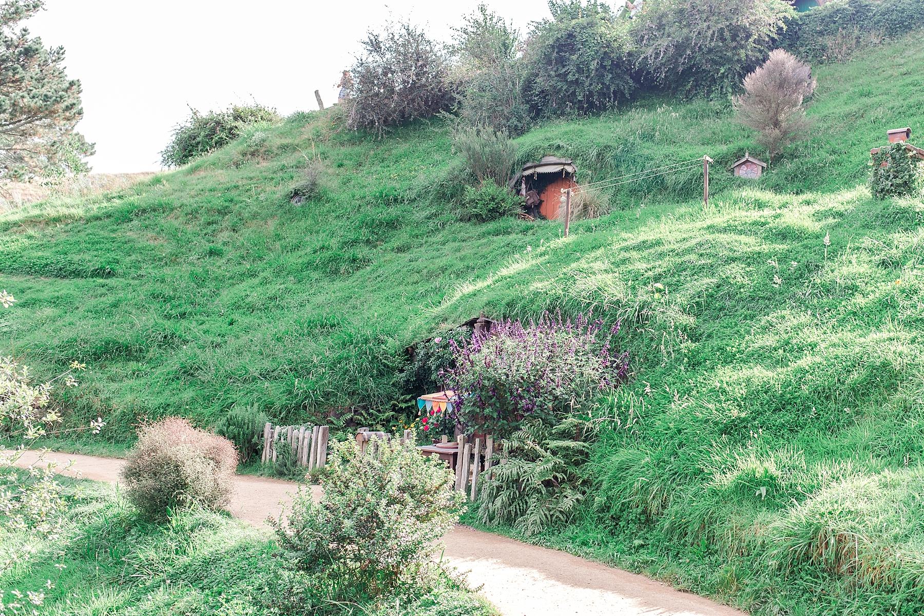 hobbiton-movie-set-matamata-hamilton-north-island-new-zealand-scenery_0255.jpg