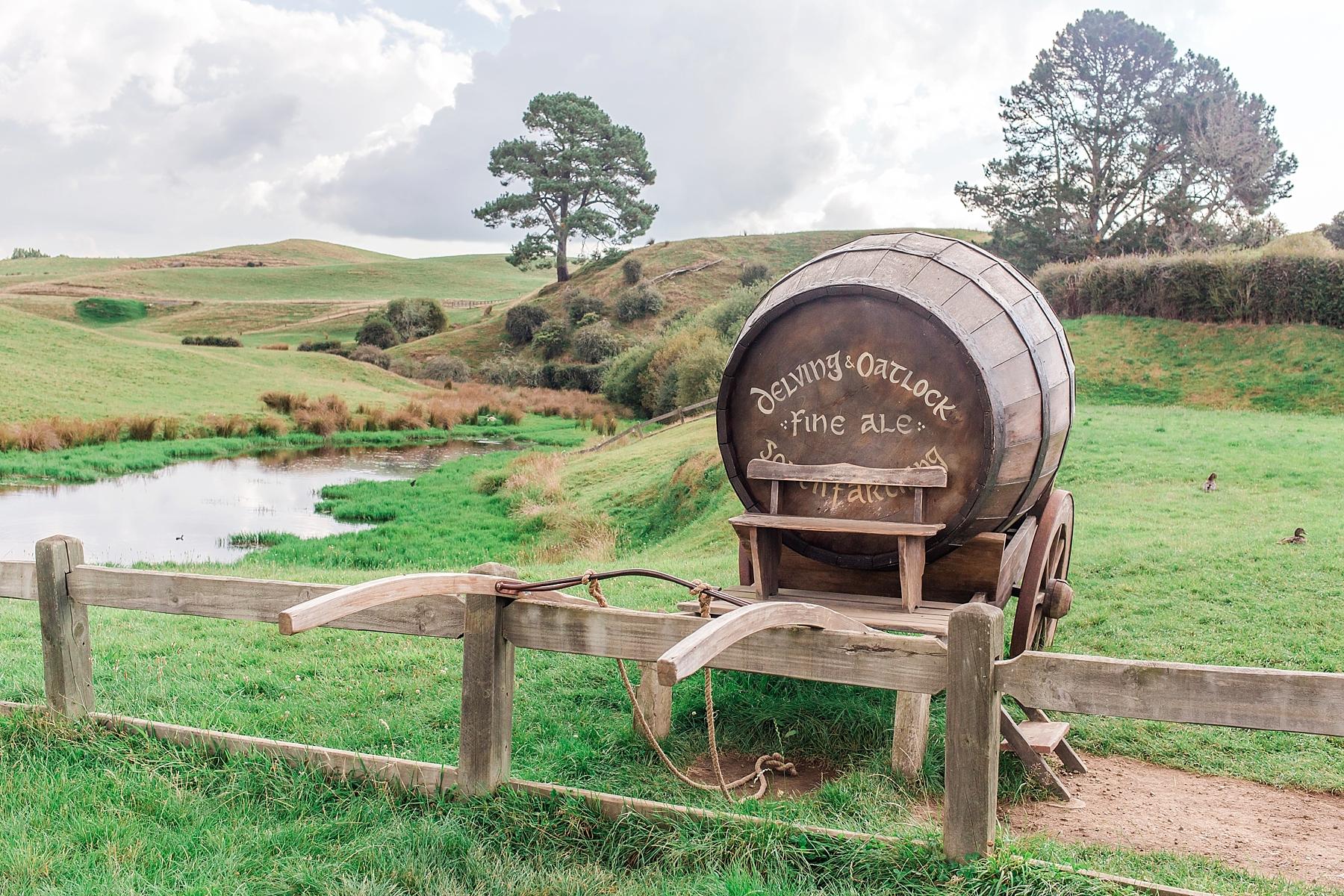 hobbiton-movie-set-matamata-hamilton-north-island-new-zealand-scenery_0260.jpg