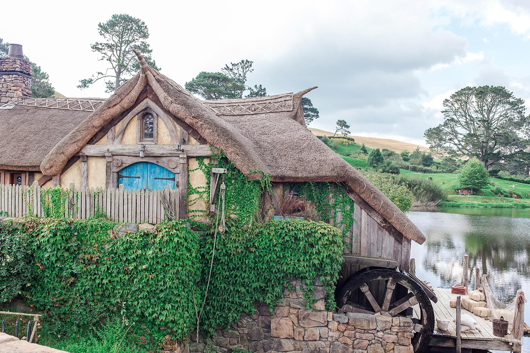 hobbiton-movie-set-matamata-hamilton-north-island-new-zealand-scenery_0263.jpg