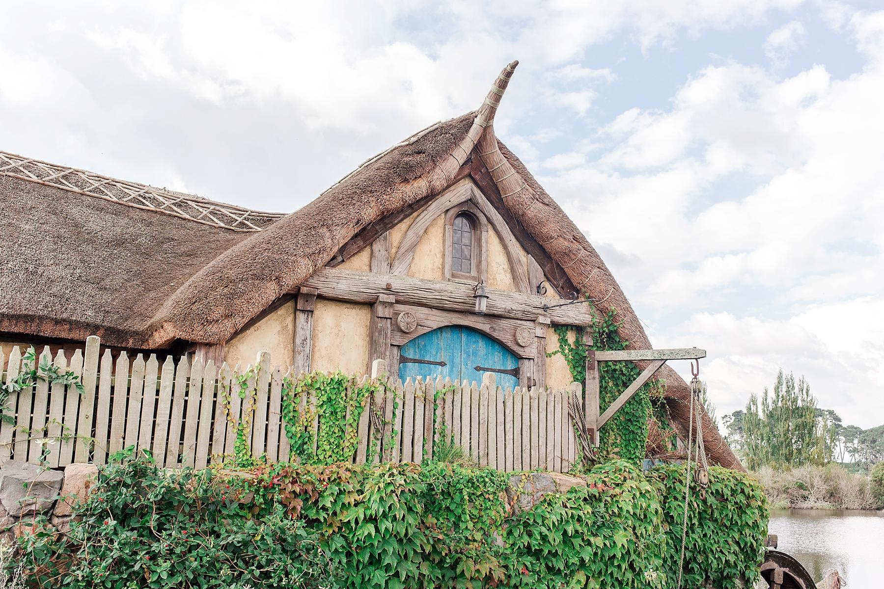 hobbiton-movie-set-matamata-hamilton-north-island-new-zealand-scenery_0262.jpg