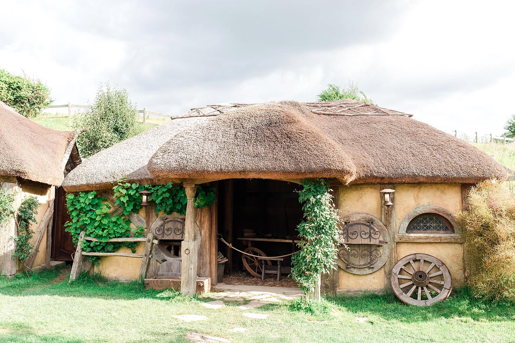 hobbiton-movie-set-matamata-hamilton-north-island-new-zealand-scenery_0265.jpg