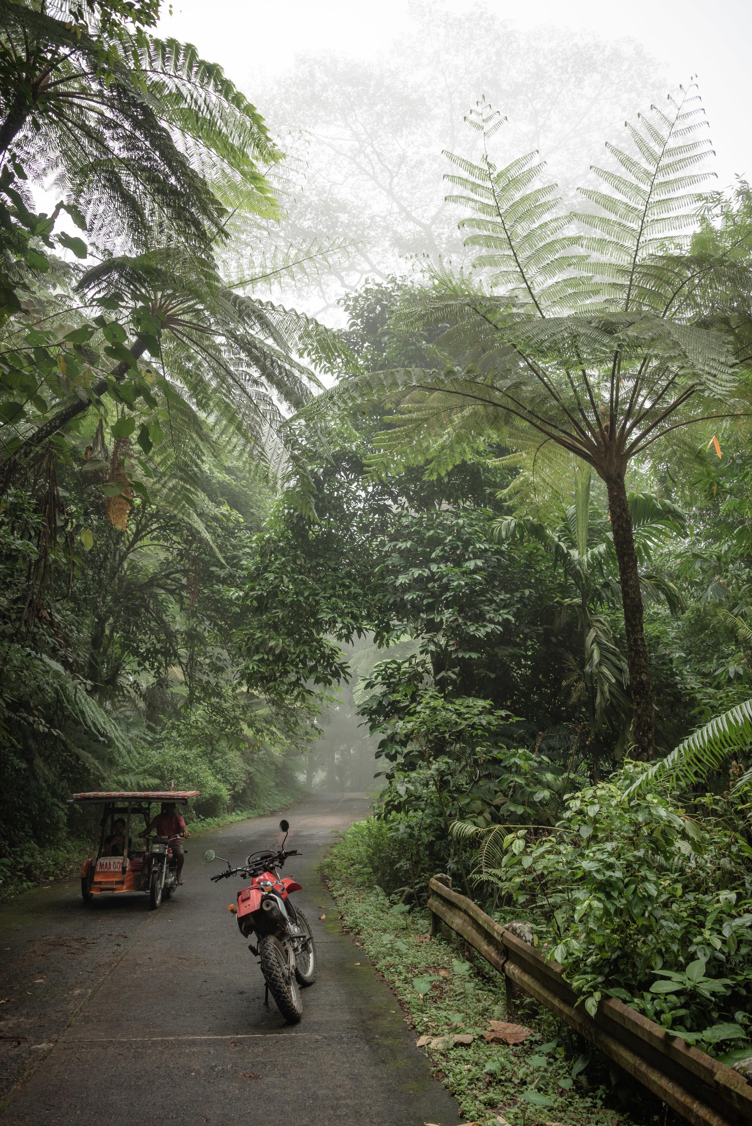 Mount Kanlaon, Negros Island, Philippines