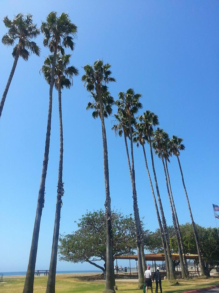 Goleta Beach Meeting Areas