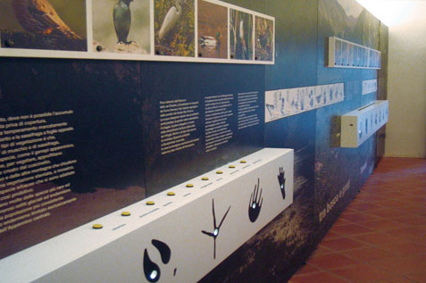 museo del legno_06_dario serio design.jpg