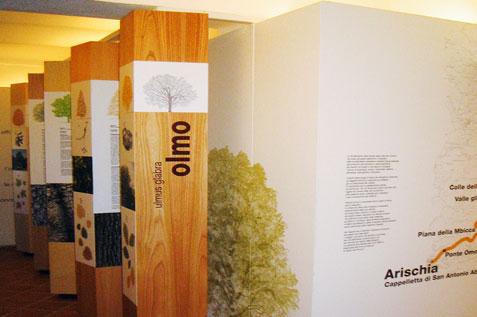 museo del legno_07_dario serio design.jpg