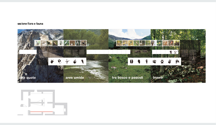 museo del legno arischia_dario serio design3.jpg