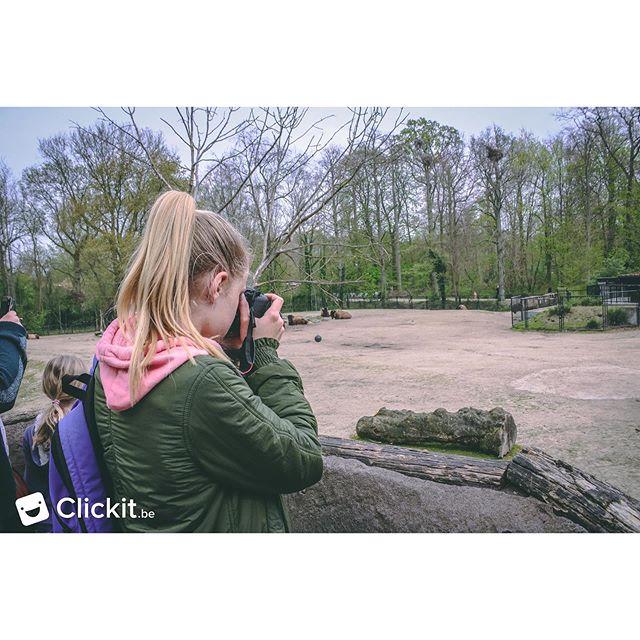 Een mooie terugblik naar het mooie Clickit avontuur. Wat fotograferen jullie het liefst? 🐘 • • • #clickit #foto #fotografie #zoo #fun #kids #fotograaf #kamp #fotografiekamp #kinderkamp