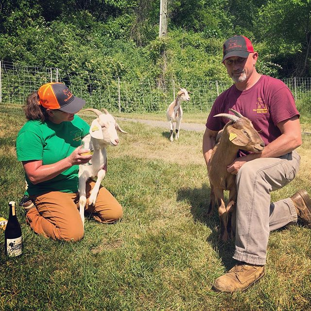 Thank you Nona and Jeff for bringing Unni, Kyla, Loki and Neala yesterday to the cidery!  #molleychompercider #lansingnc #kikogoats