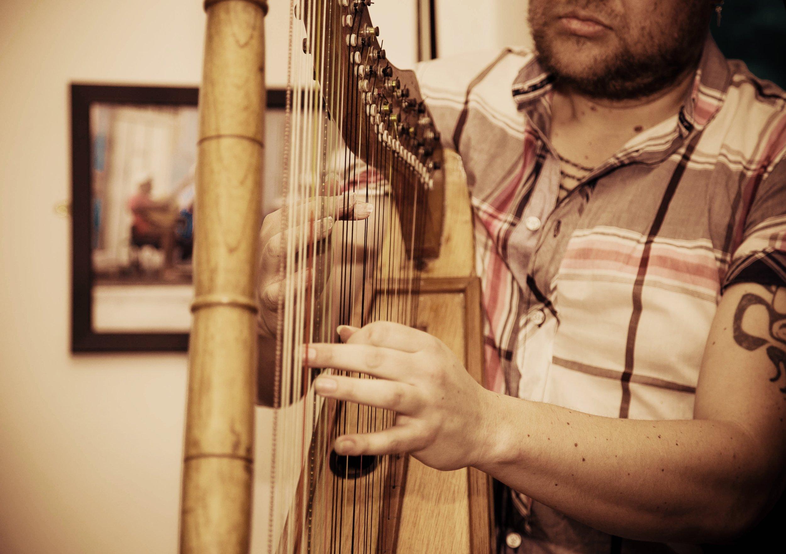 Harp close.jpg