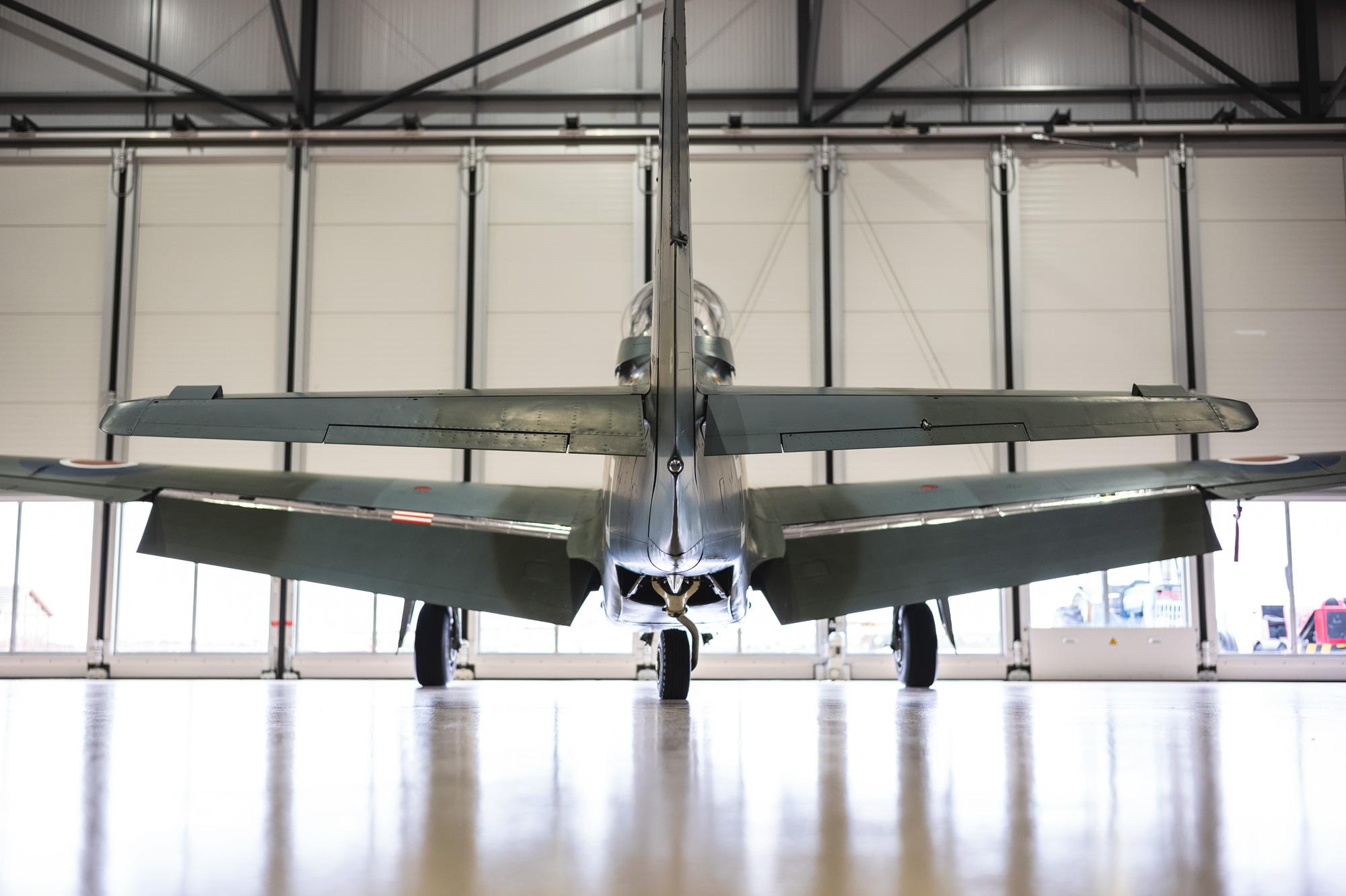 P51-Mustang-Shark_9.jpg