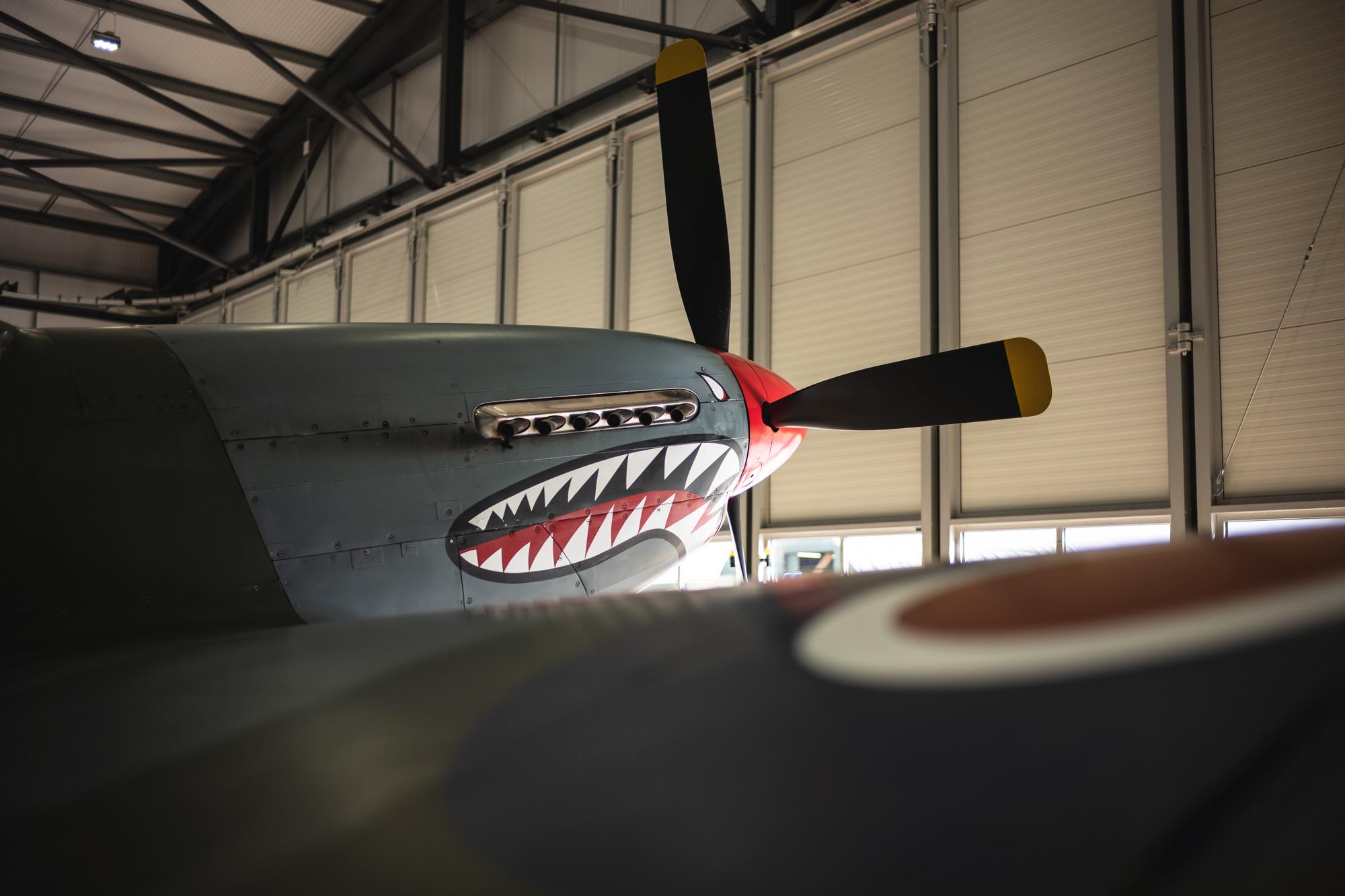 P51-Mustang-Shark_13.jpg