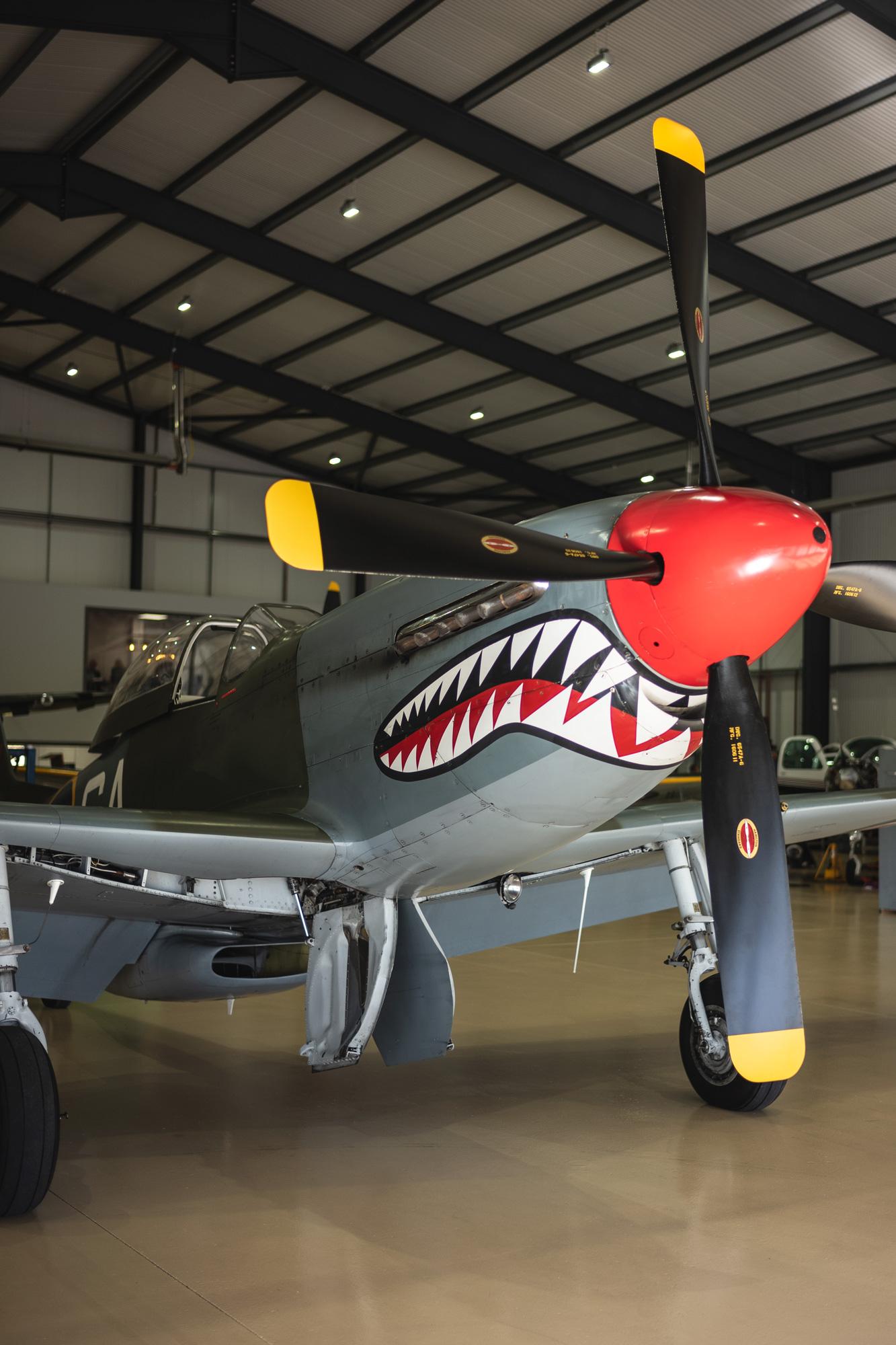 P51-Mustang-Shark_17.jpg