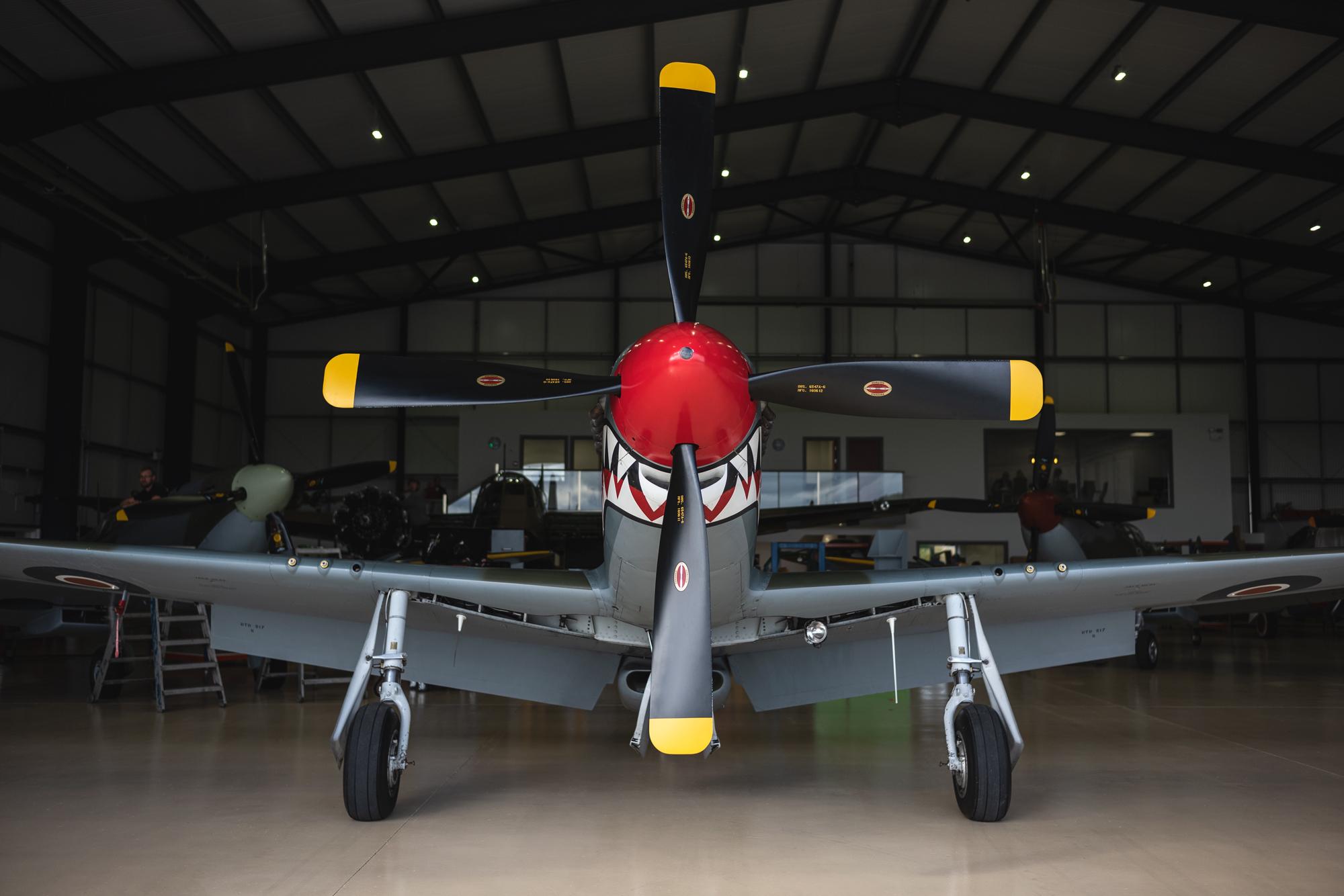 P51-Mustang-Shark_20.jpg