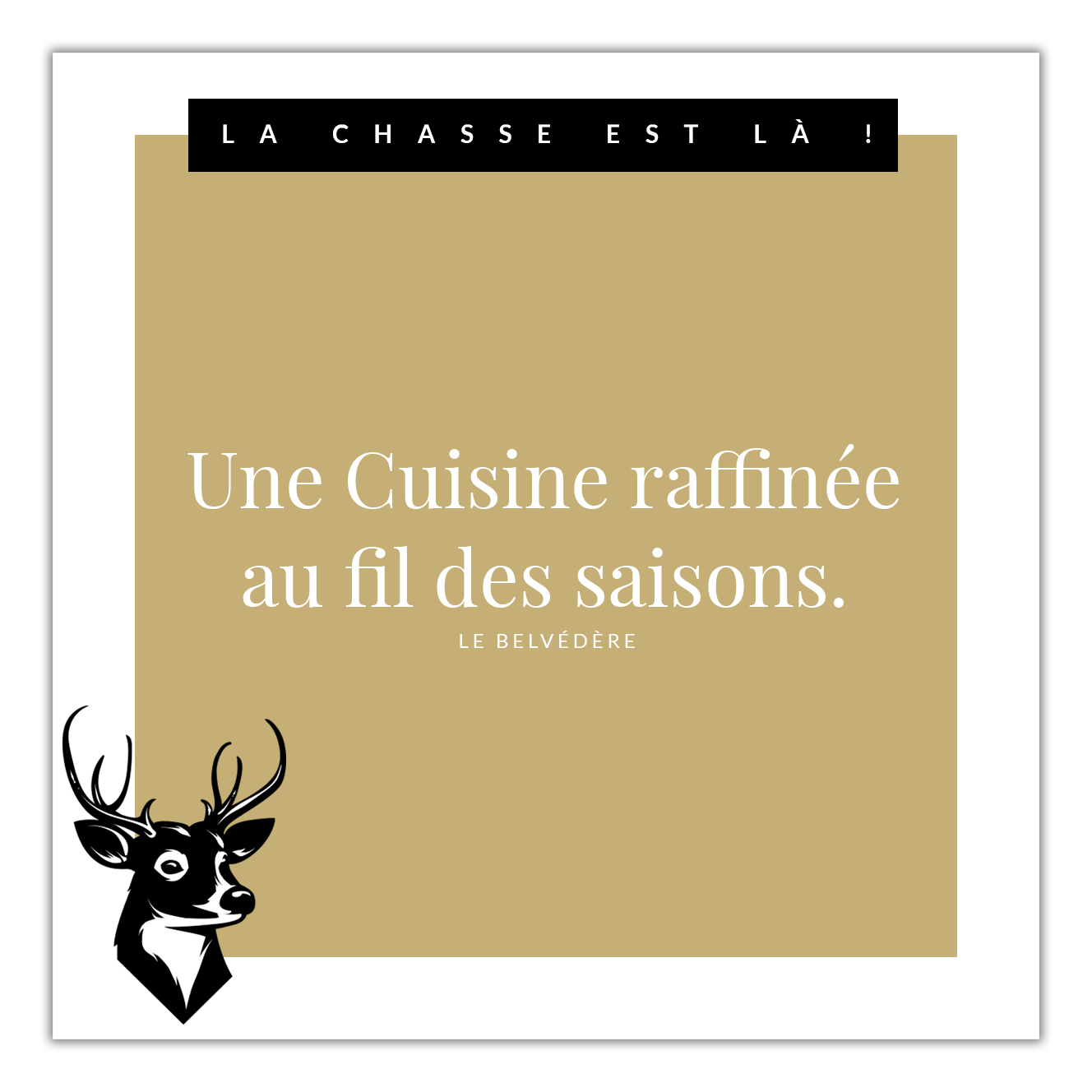 chasse.png