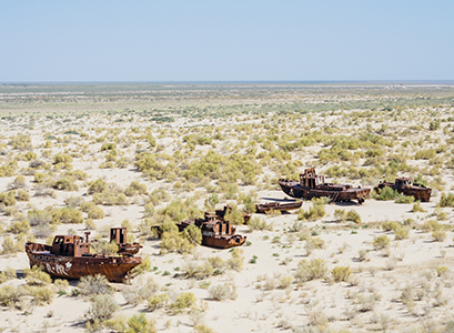 Since the 1960s, the Aral Sea has turned into a salt desert and a few saltwater lakes. The main reason for this is the intensive cotton cultivation in the region, which needs a huge amount of irrigation.
