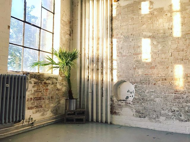• When the studio was sunny last week 😢