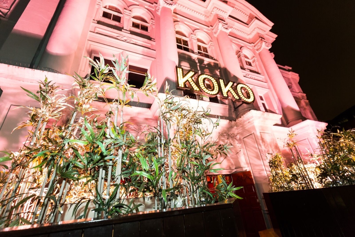 KOKO-7_1400px.jpg