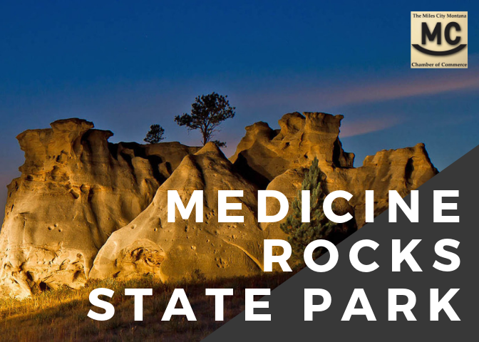 Medicine Rocks Cover.png