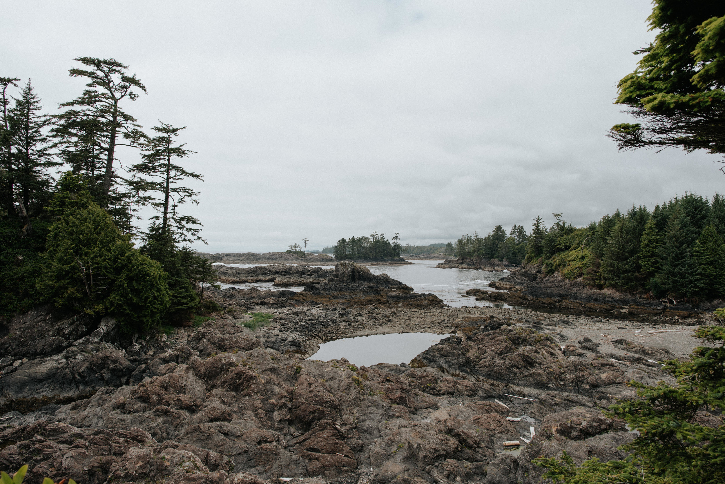 Wild Pacific Trail in Ucluelet, British Columbia