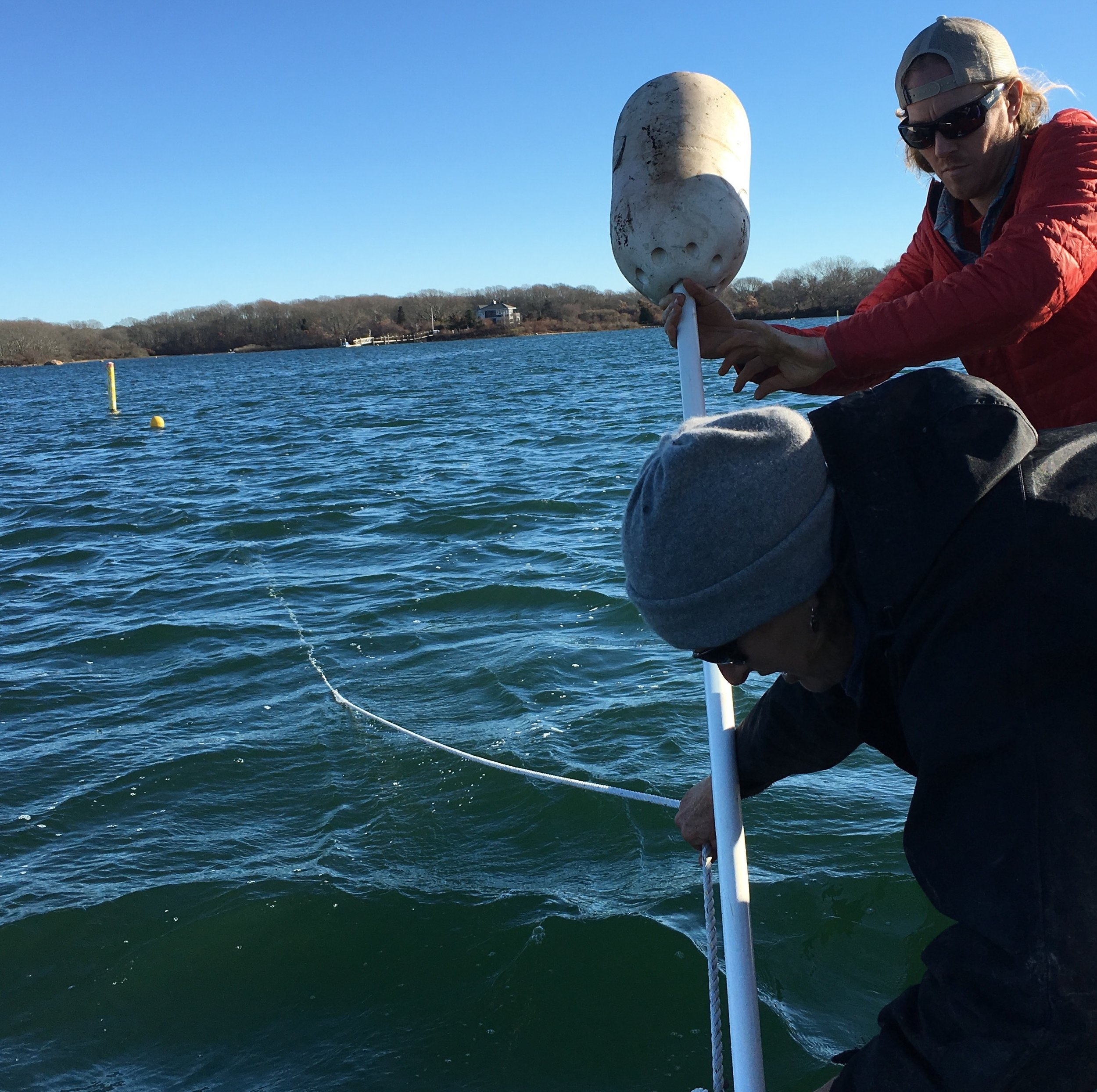Austin helps deploy a long line for growing kelp with Cindy West of Cedar Island Oysters in Point Judith, Rhode Island.