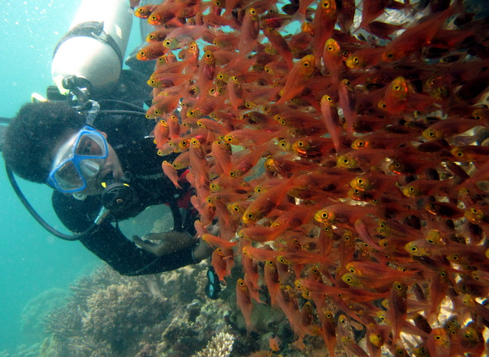 Mufti (IPB student) eyeing some glassfish.