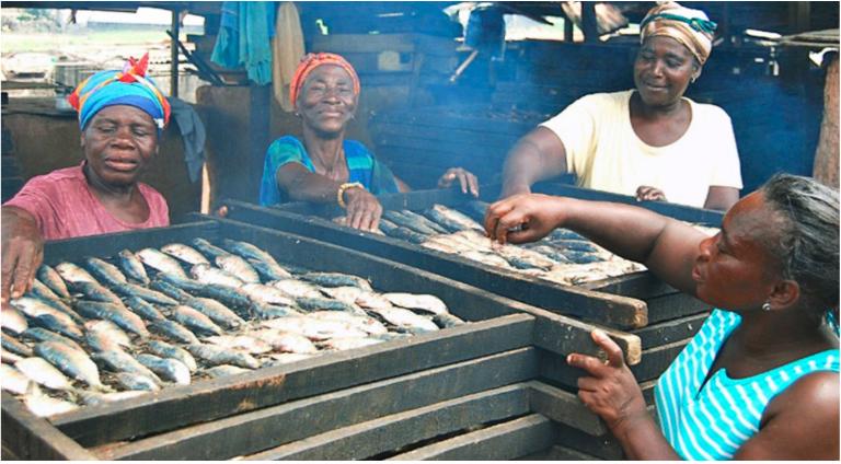 sardinella-fishery.png