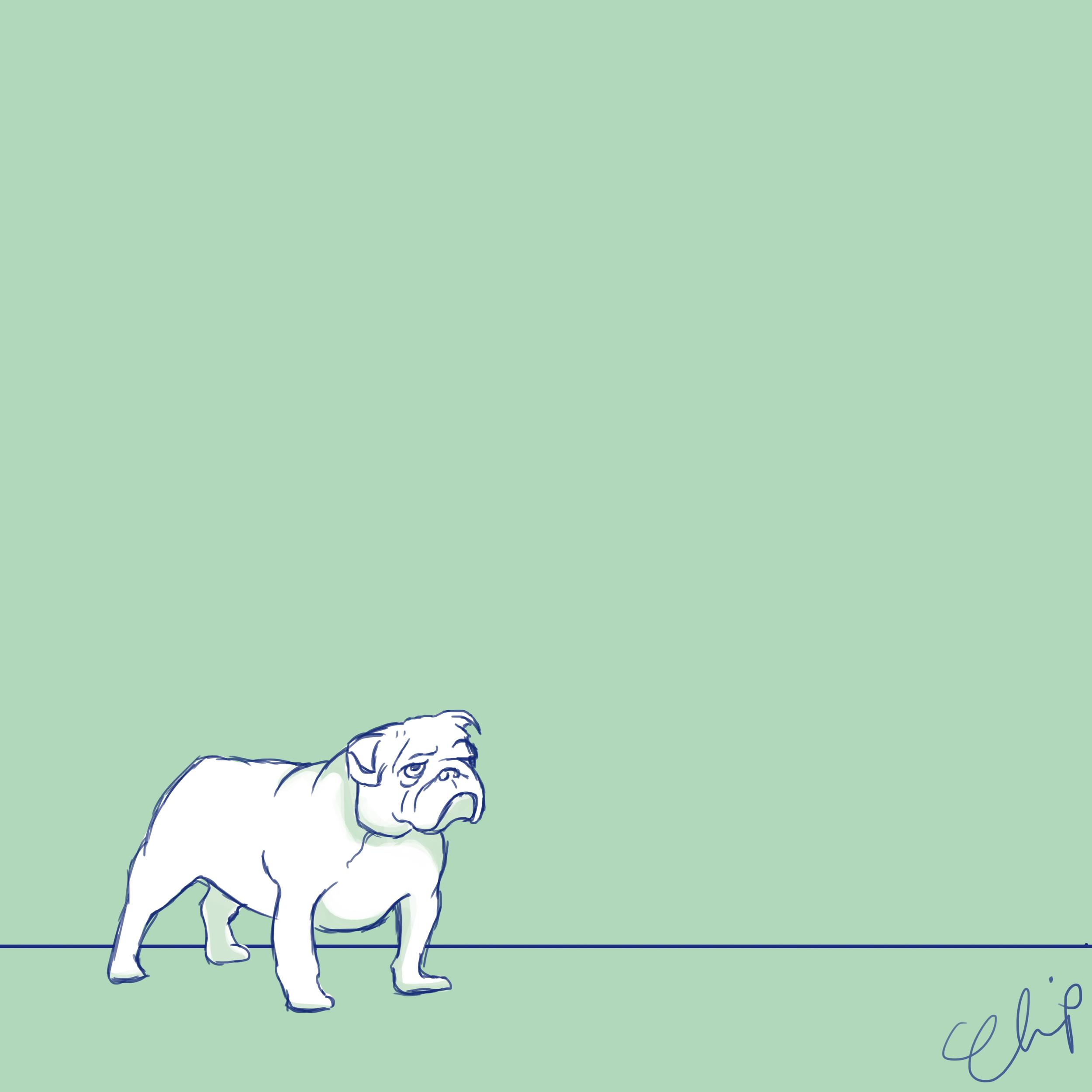 OCC_Dogs_2016_2