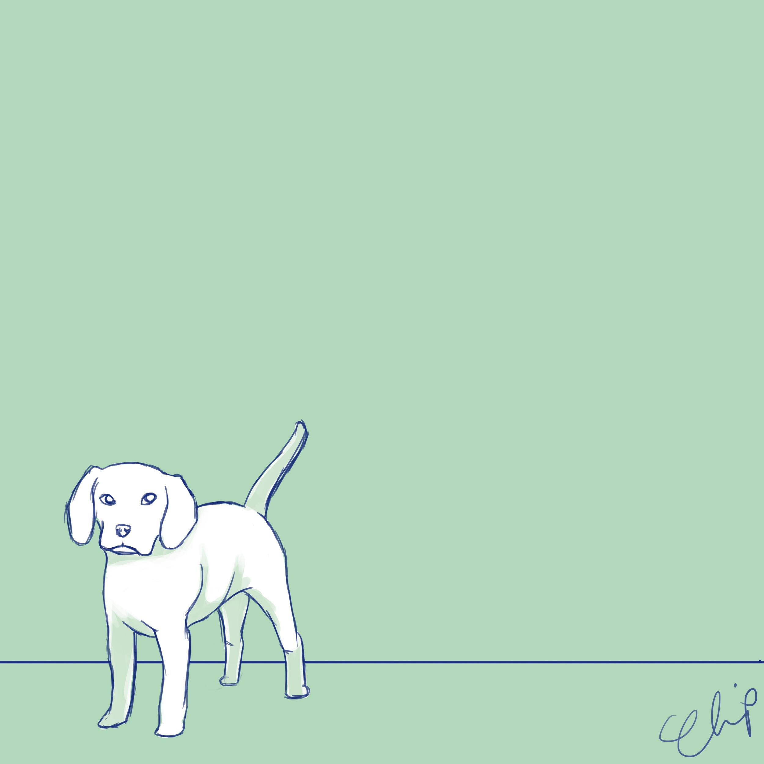 OCC_Dogs_2016_3