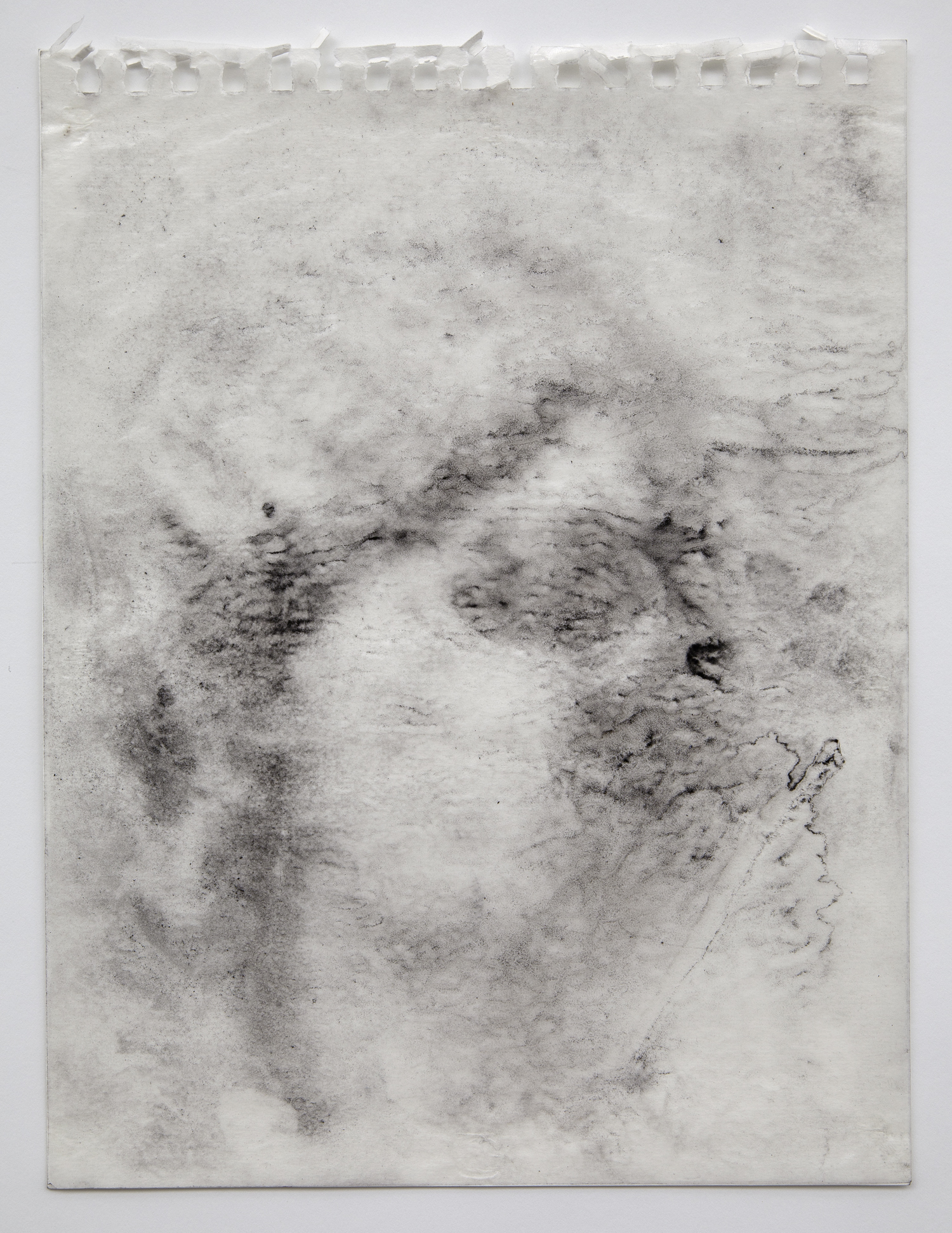 Interleaf Drawing (mother of the future Emperor of Rome), 2013