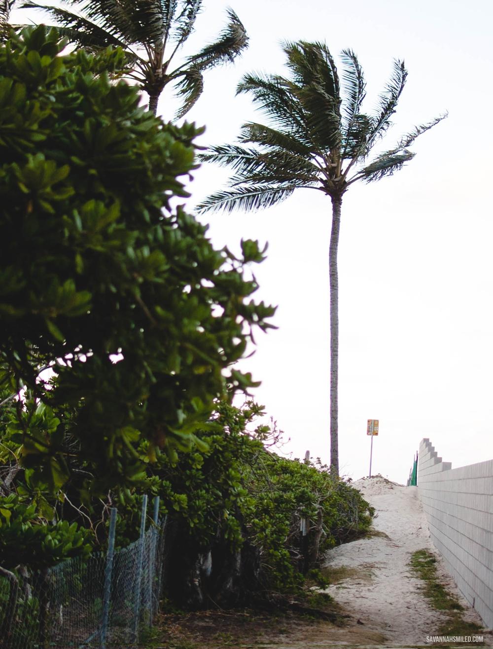 kailua-beach-hawaii-6.jpg