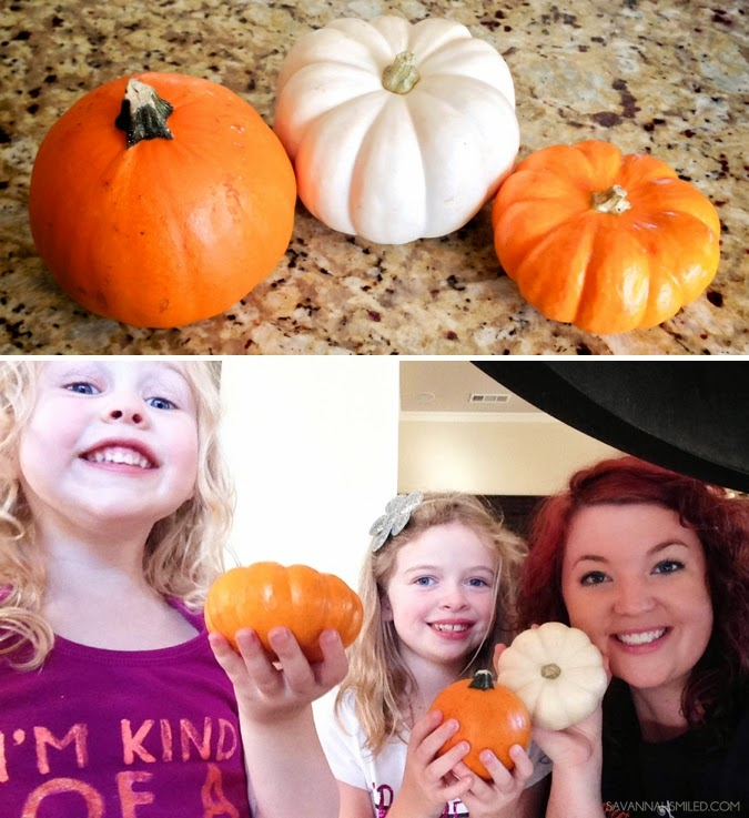 painting-small-pumpkins-with-young-kids-photo.jpg