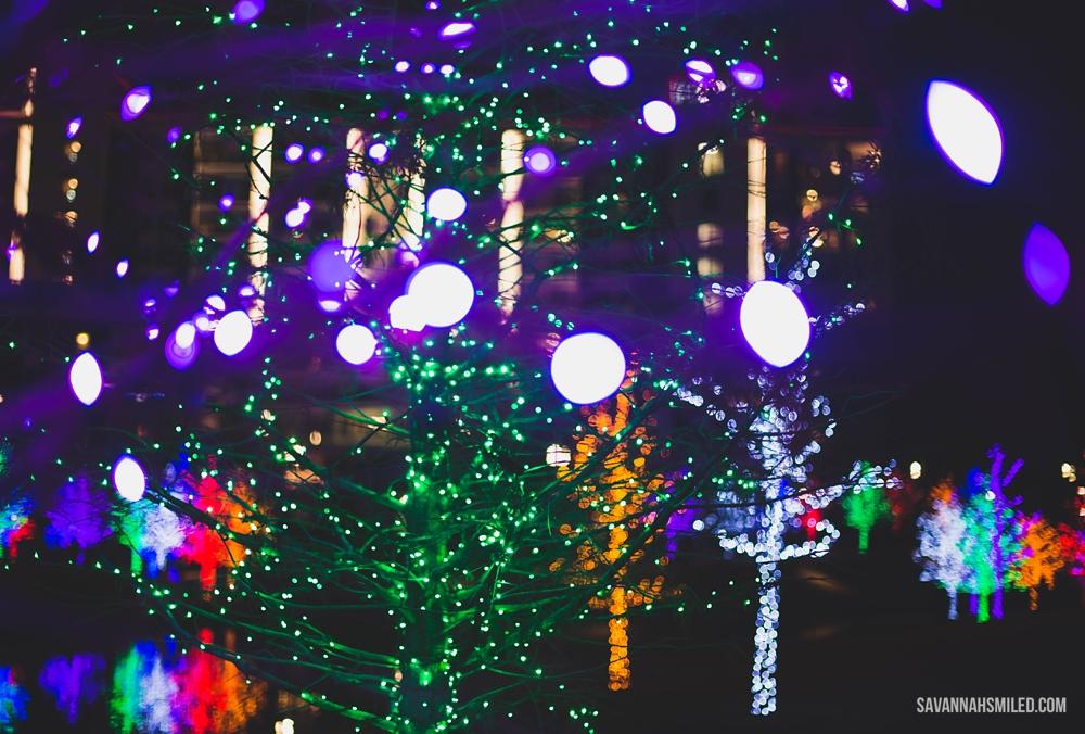 addison-vitruvian-park-dallas-christmas-lights-15.jpg