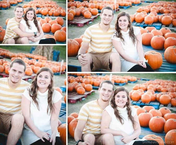 pumpkin-patch-5.jpg