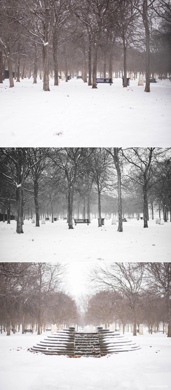 snow-day-dallas-weather-11.jpg