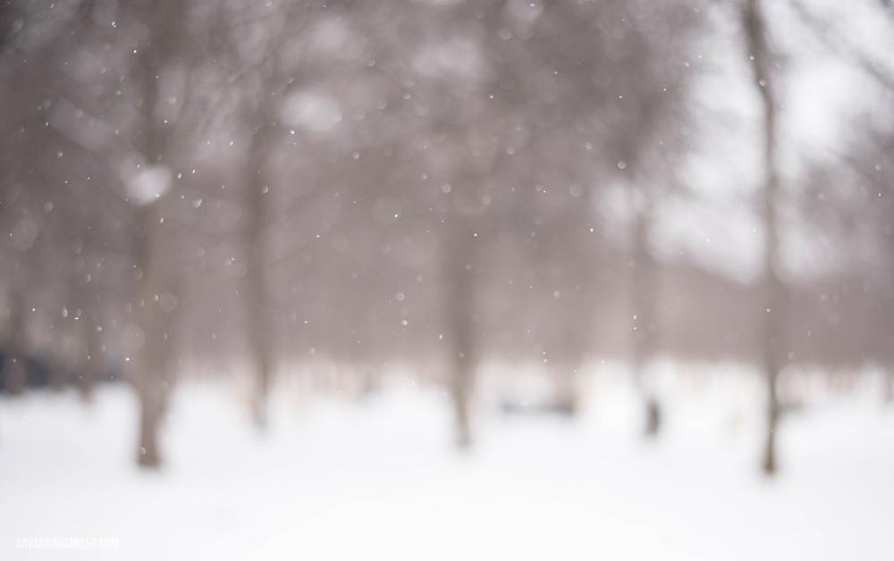 snow-day-dallas-weather-13.jpg