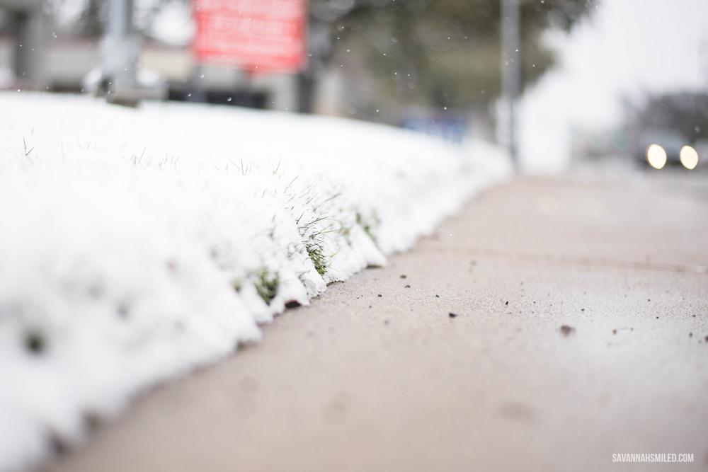 snow-day-dallas-weather-24.jpg
