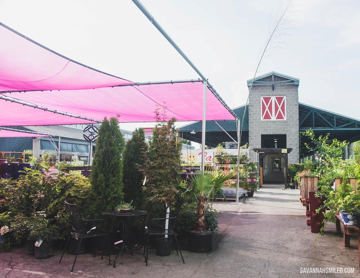 nashville-farmers-market-6.jpg