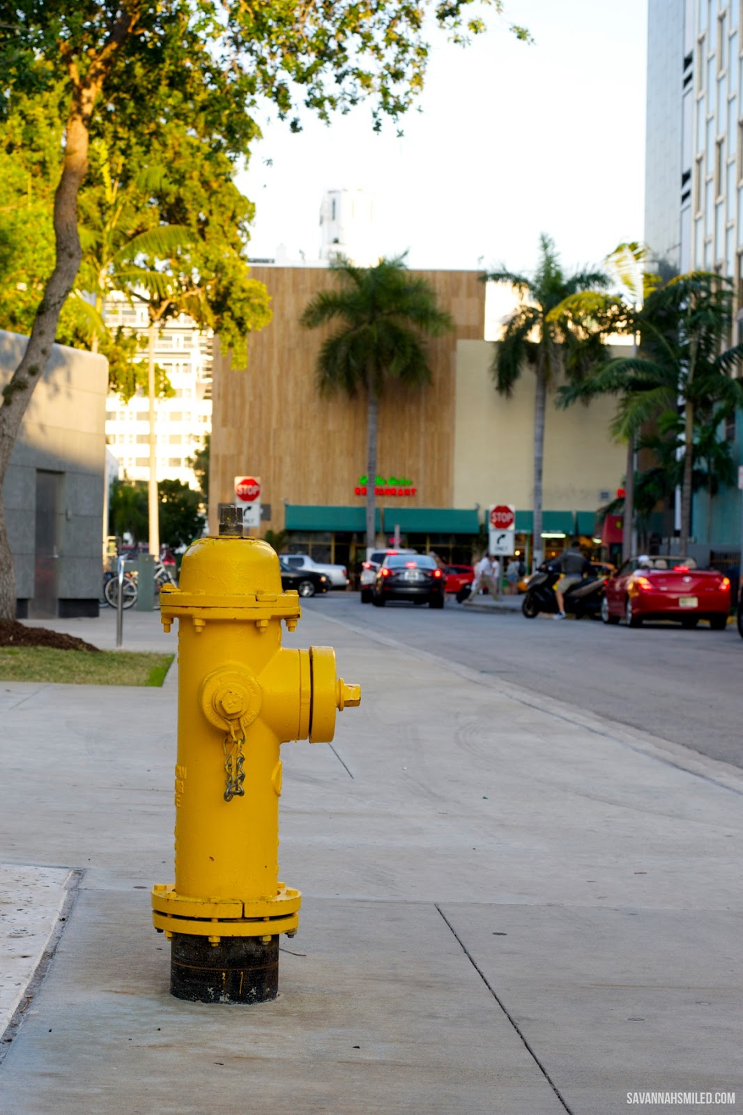 south-beach-miami-florida-hydrant.jpg