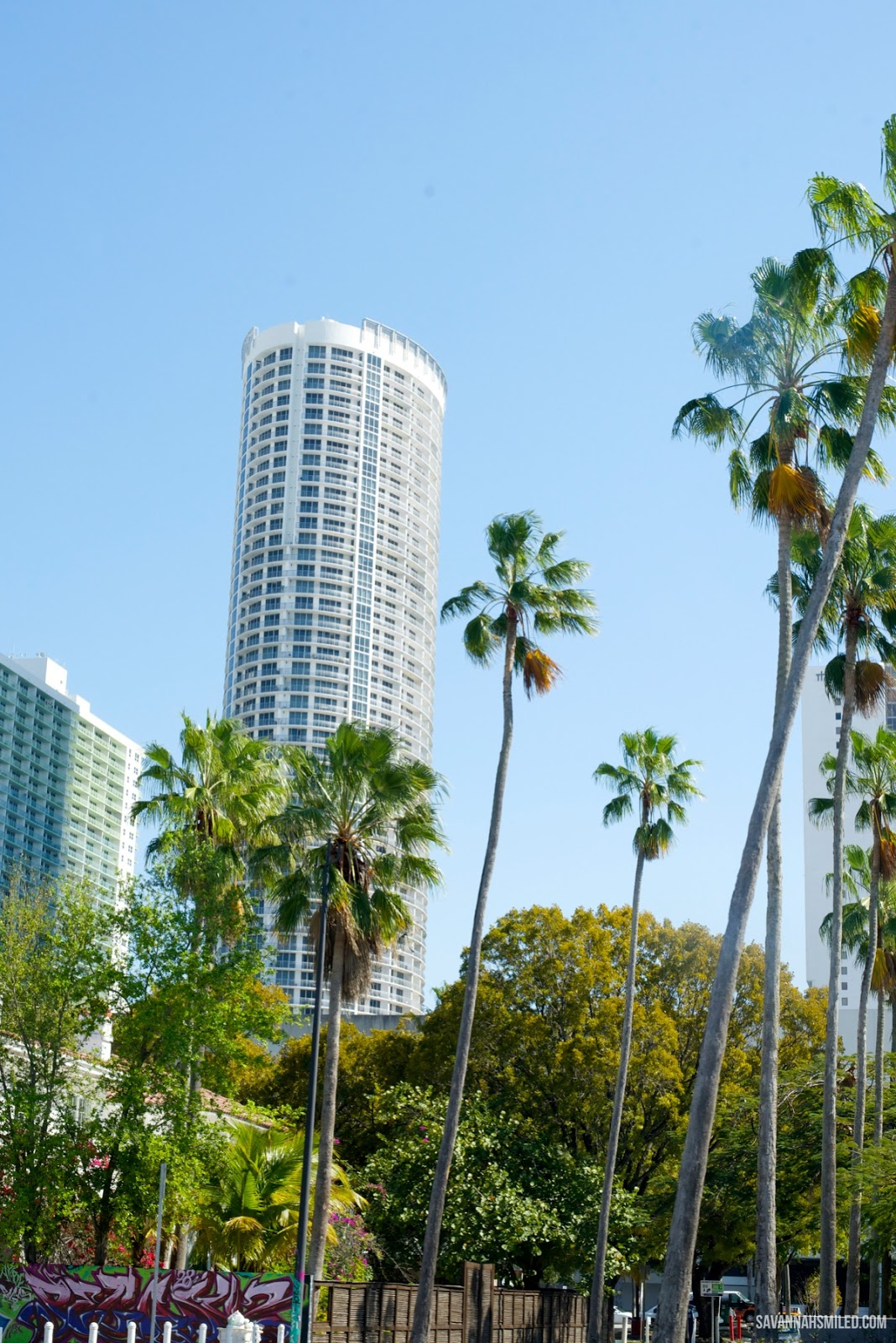 miami-city-florida.jpg
