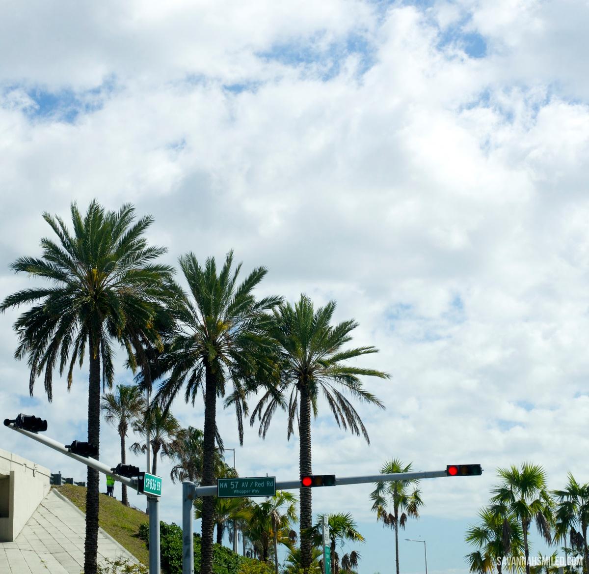 miami-florida-travel-blogger.jpg