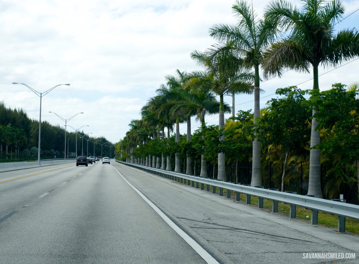 fort-lauderdale-florida-travel-blogger-blog.jpg