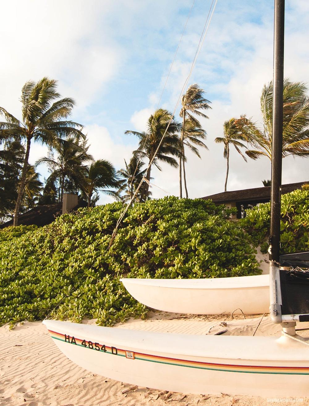 oahu-hawaii-sunrise-beach-vacation-8.jpg