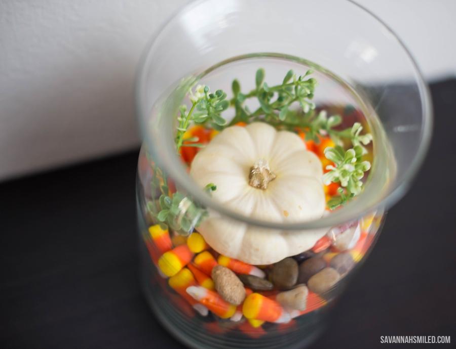 simple-fall-autumn-terrarium-pumpkin-6.jpg
