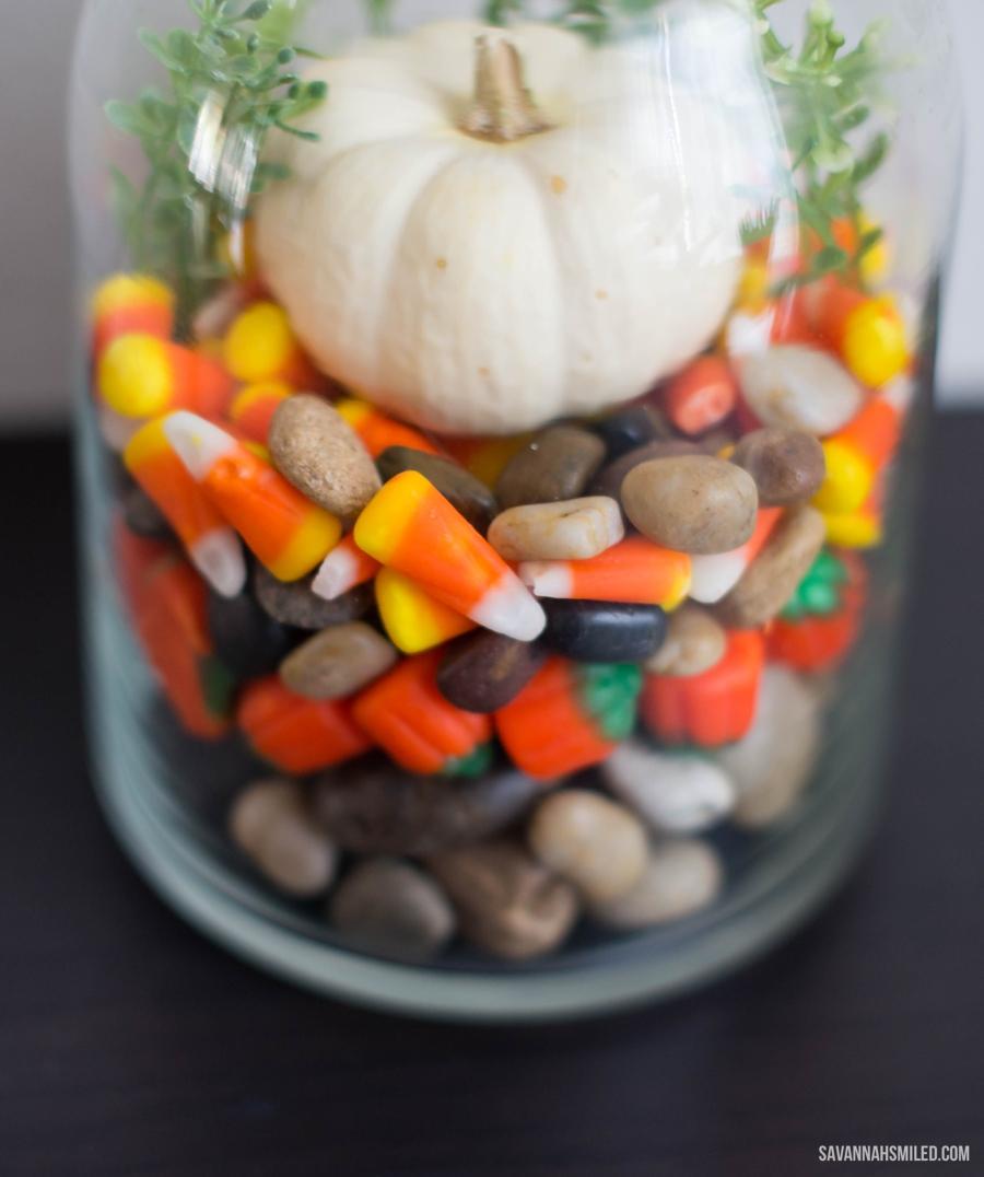 simple-fall-autumn-terrarium-pumpkin-4.jpg